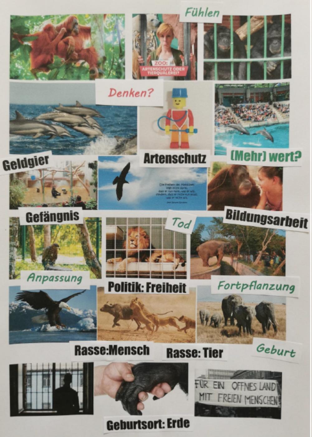 Florian Fritzsch Collage zum Thema Mensch und Tier