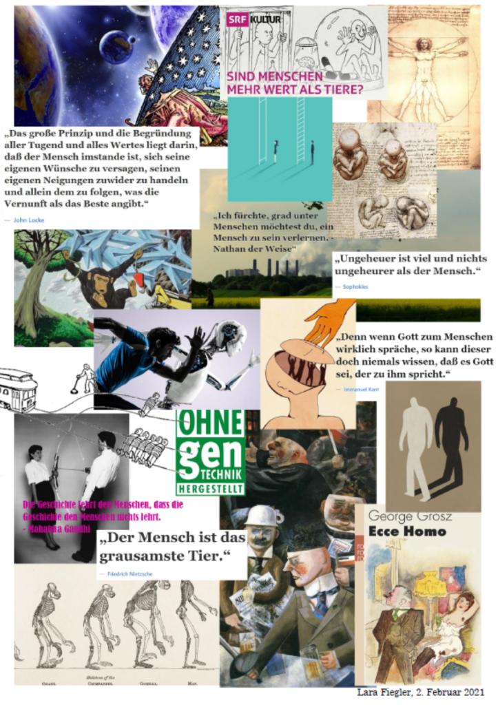 Lara Fiegler Collage zum Thema Koordinaten des Menschseins